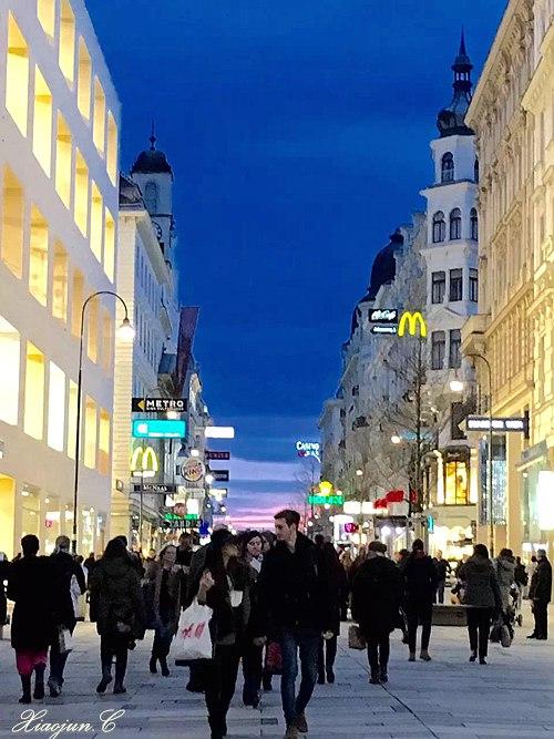 远歌国际_维也纳变奏曲_现实生活
