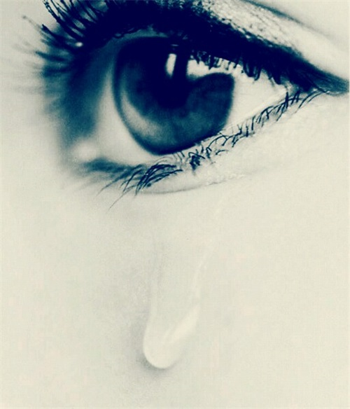 远歌国际_维也纳变奏曲_眼泪